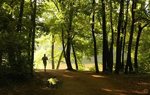 Мотивирующая пробежка